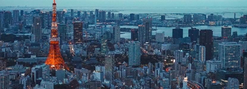 東京都内への出張カウンセリング:アネ婚