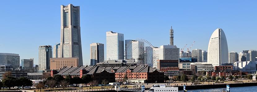 神奈川県内への出張カウンセリング:アネ婚